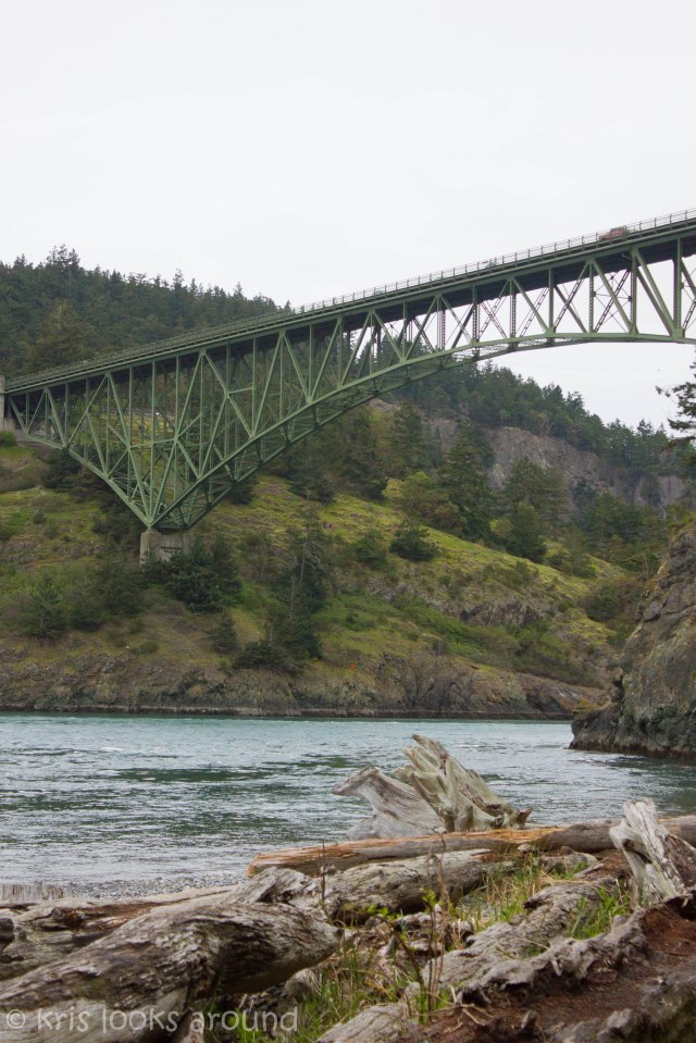 Tulip Festival Deception Pass-107
