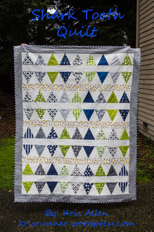 Shark Tooth Title Quilt -